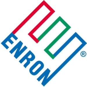 The Enron story